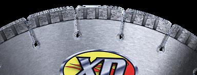 XDH1 segment