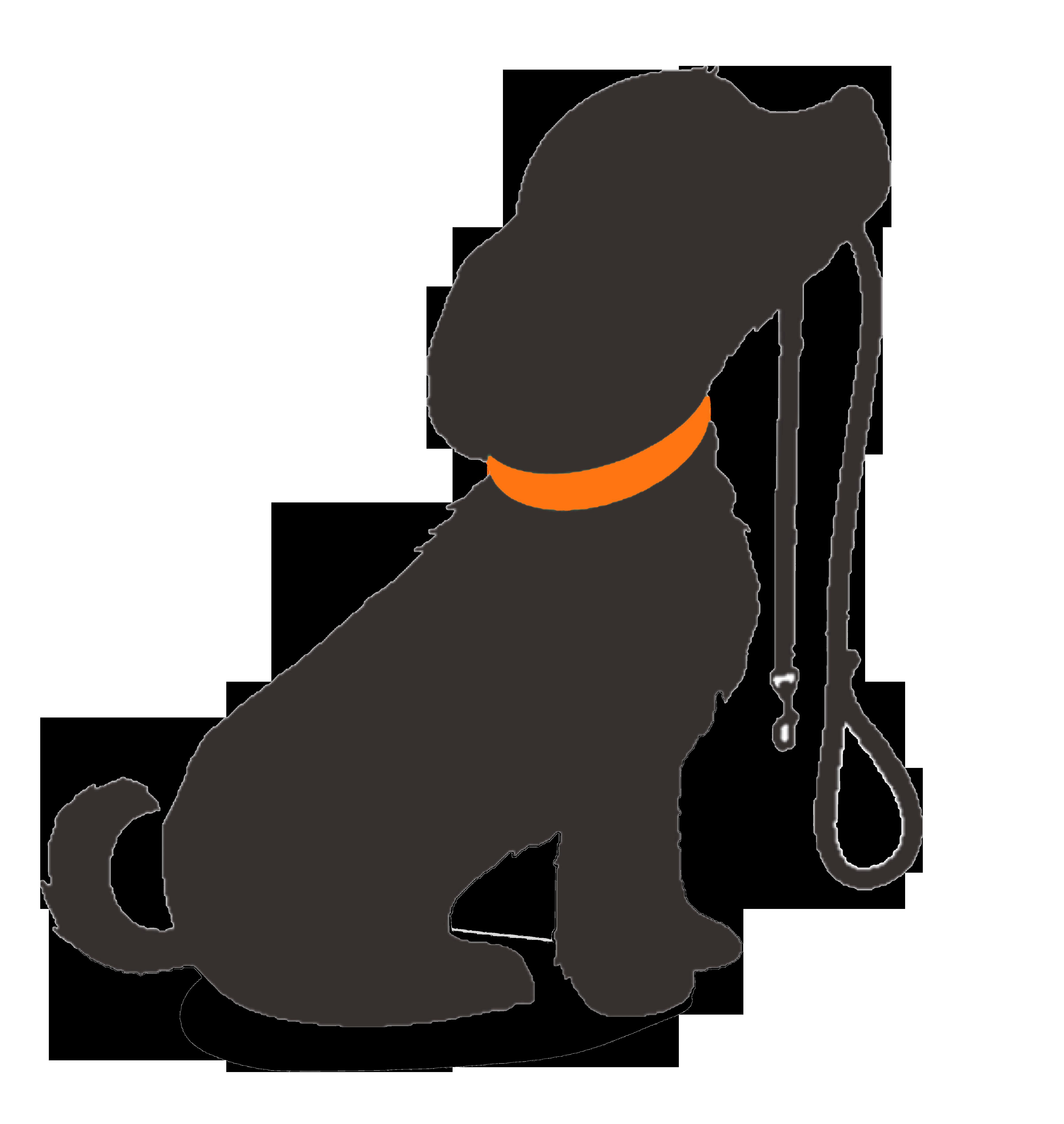 Dog Obedience Training Walking On A Leash