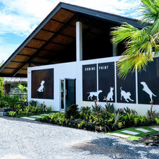 Welcome, to Canine Point. A luxury, boutique Dog Resort and Training Centre, right here in Phuket!