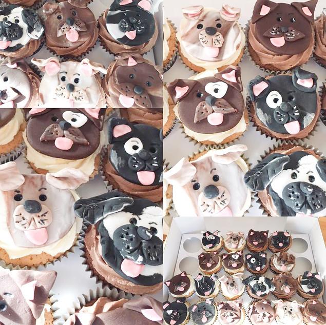 Doggie Faces Cupcakes