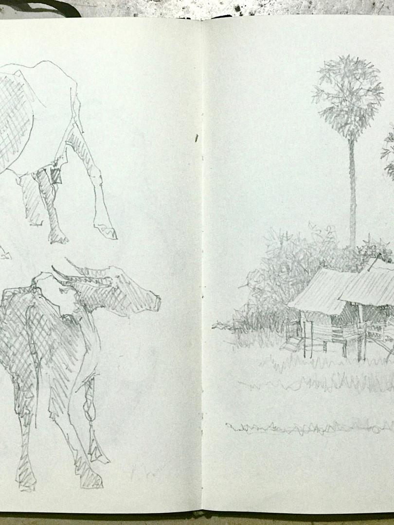 Laos farm scenes.