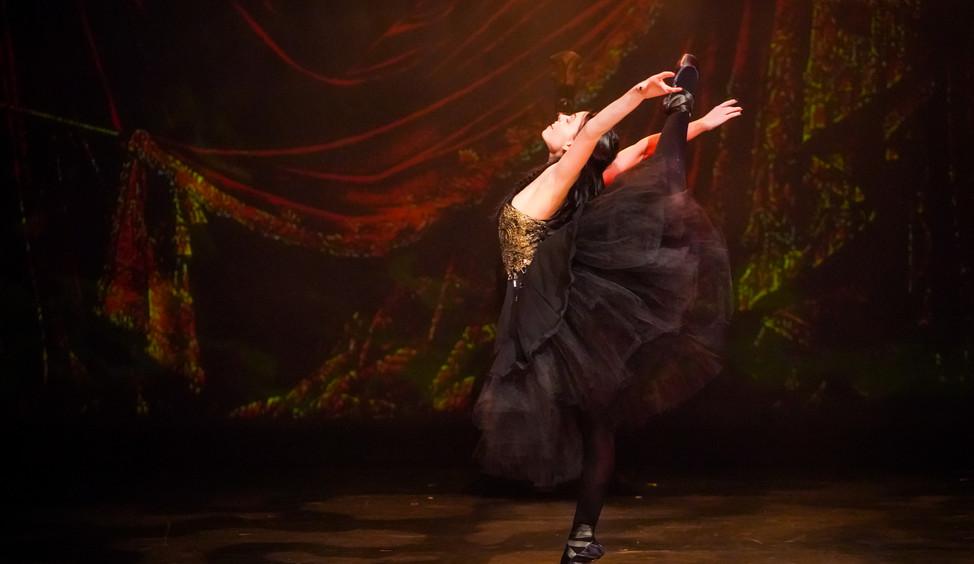 Synetic Theater Phantom of the Opera Katherine DuBois Award Winning Director Producer Washington Post, Cinematic Theater