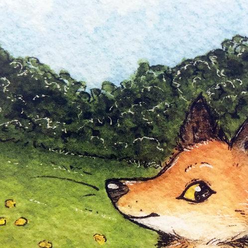 Summer Fox Print