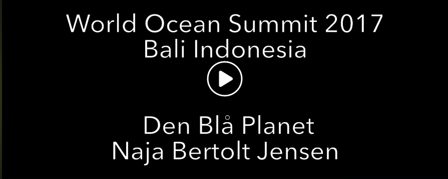 Representative World Ocean Summit