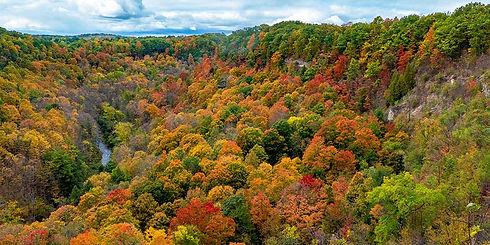 Fall-Hikes-Title.jpg