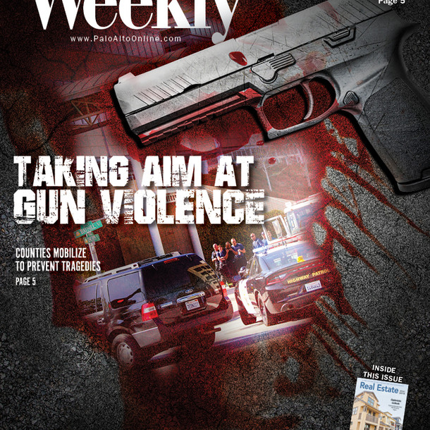 Taking Aim at Gun Violence
