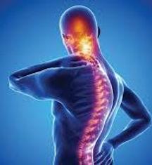 spondylitis icon.jpg