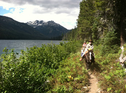 Trail northside of Waptus Lake