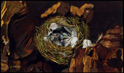 Le nid, The nest.