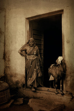 La bergère de Lohalgarh - Joël Cadio