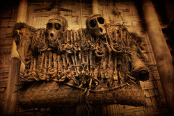 Crânes de Singe.