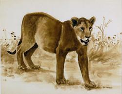 Lionne. Lioness.