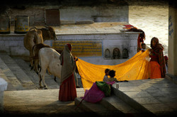 Un sari au soleil - Joël Cadiou