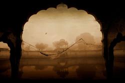 L'oiseau solitaire - Joël Cadiou