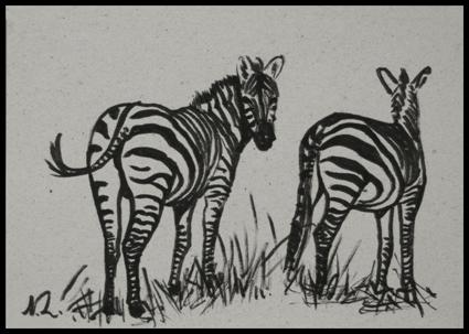 -Dessin,_drawing,_Zèbres,_streaks,10_x_14_cm