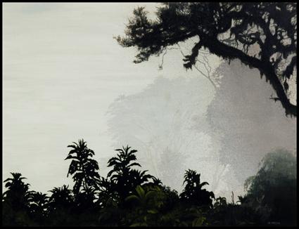 Brouillard sur le cratère du Ngorong