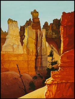 Canyon. U.S.A