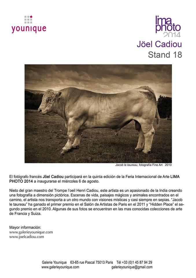Jacob le taureau de Joël Cadiou