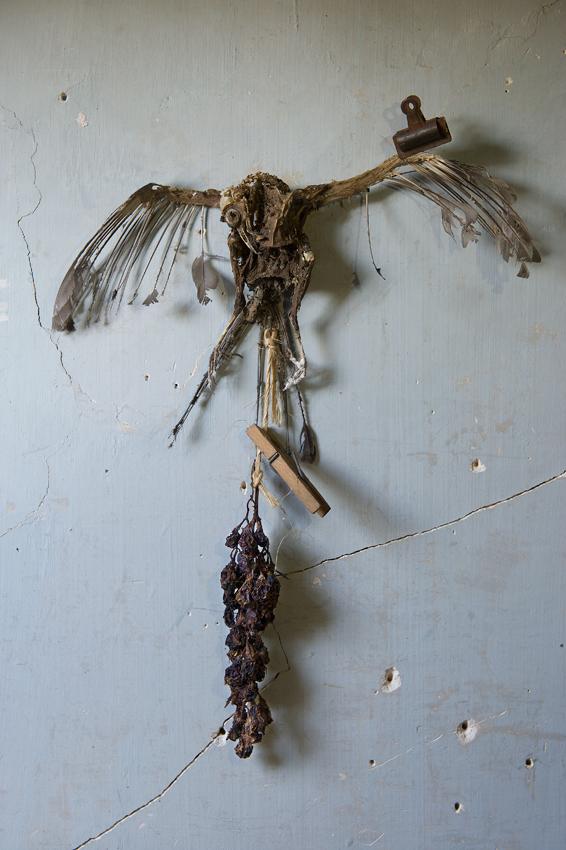 La-mort-suspendue, Joel Cadiou
