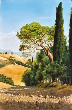 Gilou, Toscane 2002