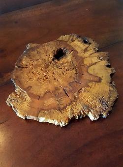 Cypress Trivett.jpg