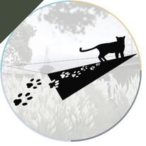 石虎來囉!- 宜蘭縣卓蘭鎮大安溪生態公園規劃設計