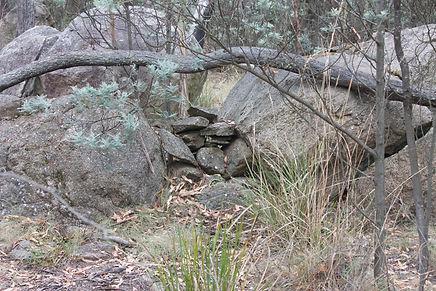 Part of the unexplained Glendale Stonewall, Namadgi National Park