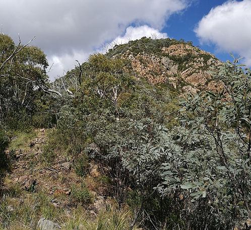 Tidbinbilla Peak