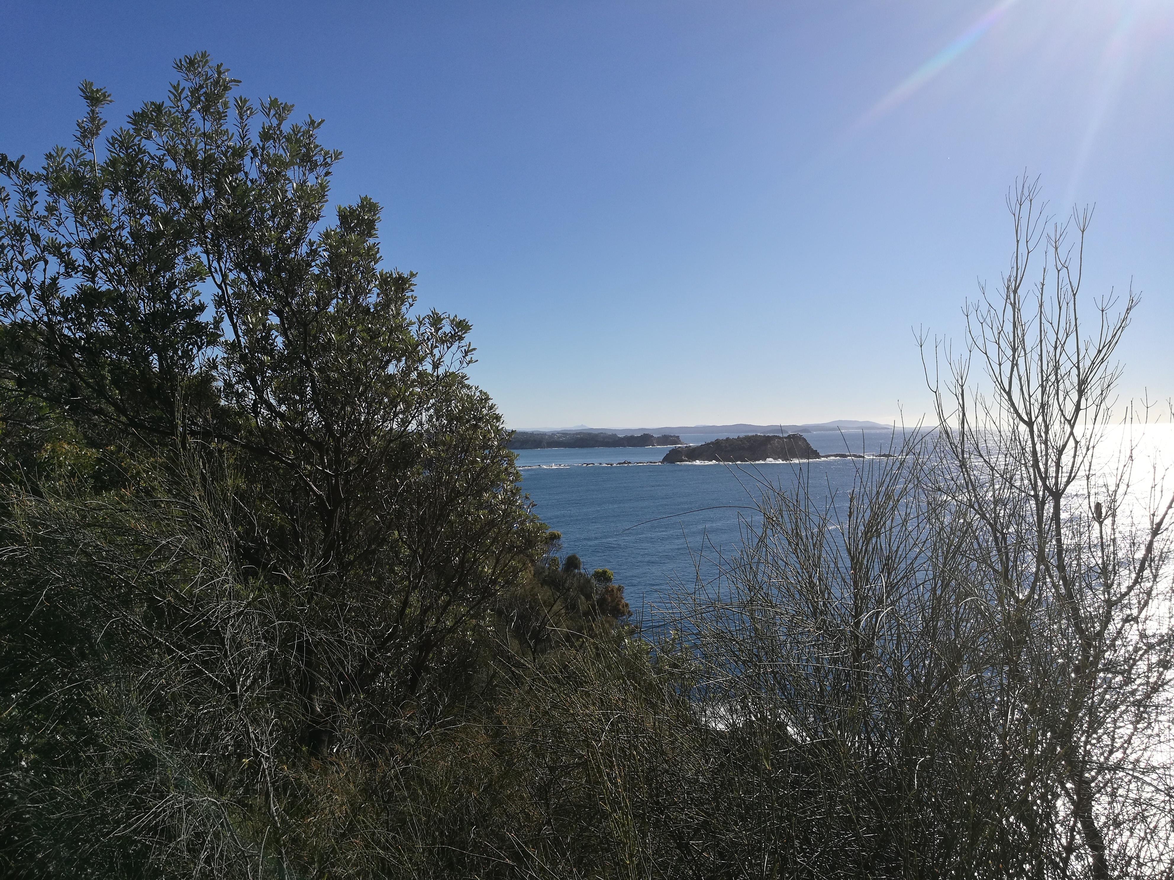 Burrewarra Point, Gorilla Bay