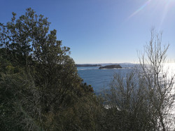 Burrewarra Point, Gorilla Bay
