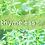 Thumbnail: eleblend thymeless (20g)