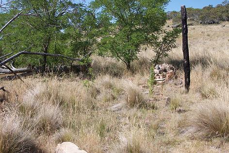 Rowley's Rendezvous Creek Hut Remains