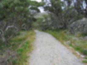 Main Range Loop Walk, Kosciuszko National Park