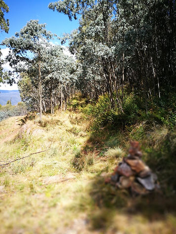 Start of walking track to John's Peak, Tidbinbilla