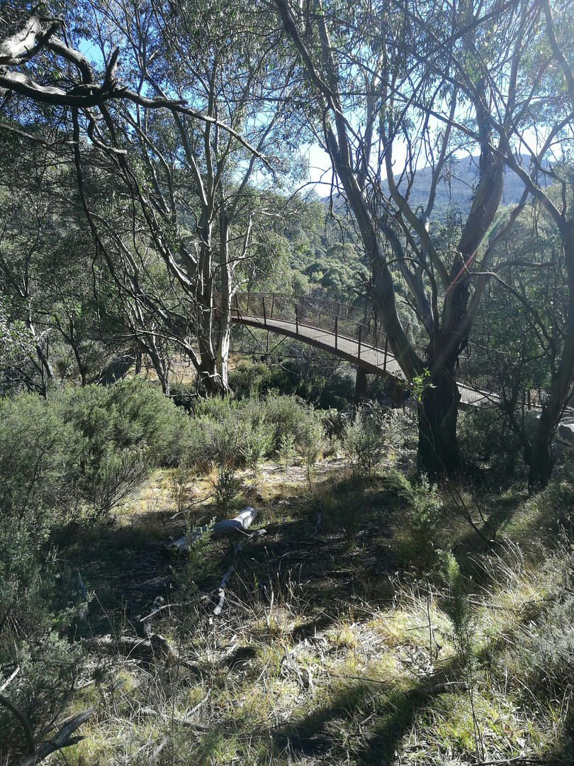 Thredbo Valley Walk