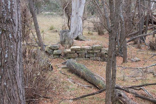 Lone Pine Homestead