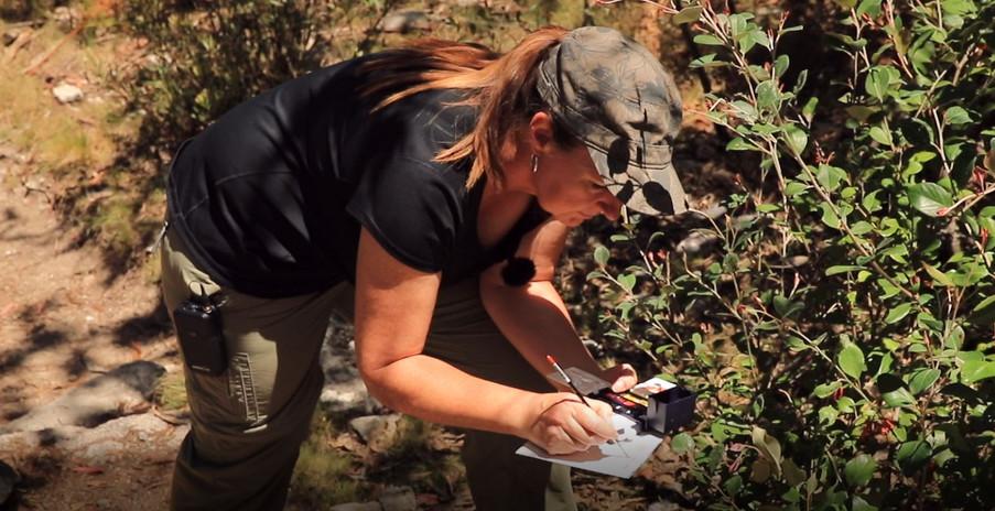 Namadgi Documentary - Cheryl Hodges