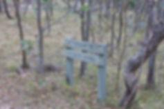 Brandy Flat Walking Track, Namadgi National Park