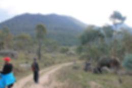 Old Bobeyan Road