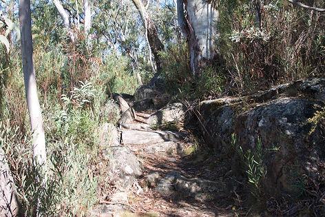 Walking Track, Rendezvous Creek