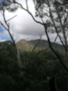 View from John's Peak towards Tidbinbilla Peak
