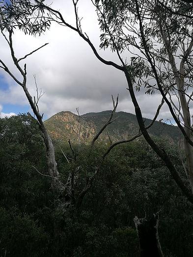View from John's Peak towards Tidbinbilla Peak