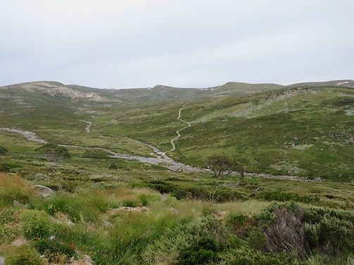Main RangeLoop Walk,Kosciuszko National Park