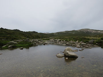 Snowy River, Kosciuszko National Park