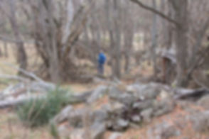 Lone Pine Homestead Namadgi