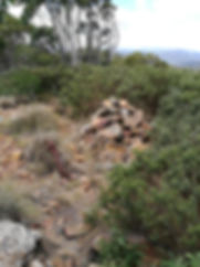 Peak of Mt Tidbinbilla