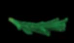 Concept_logo.png