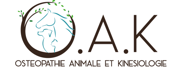 Logo_OAK_texte_marron.png