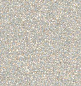 Starlight_first-class-tm981_S.jpg