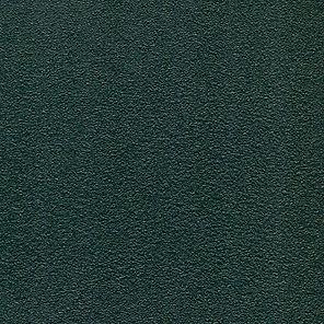 TM3004 Forest.jpg